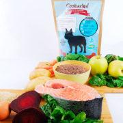4830-7-alimento-para-perros-salmon